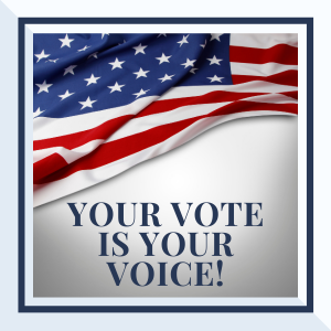 Your Vote is Your Voice logo